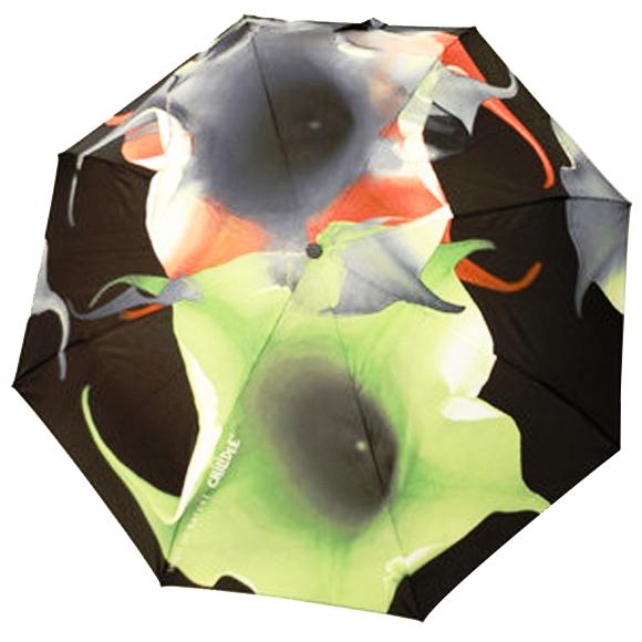 01d2parapluie